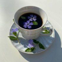 Black-Owned Coffee & Tea